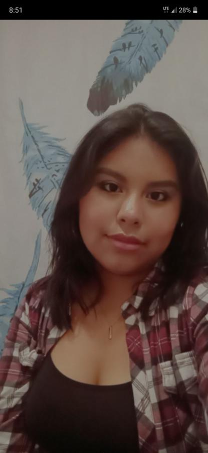 Melisa Sanchez-Castillo